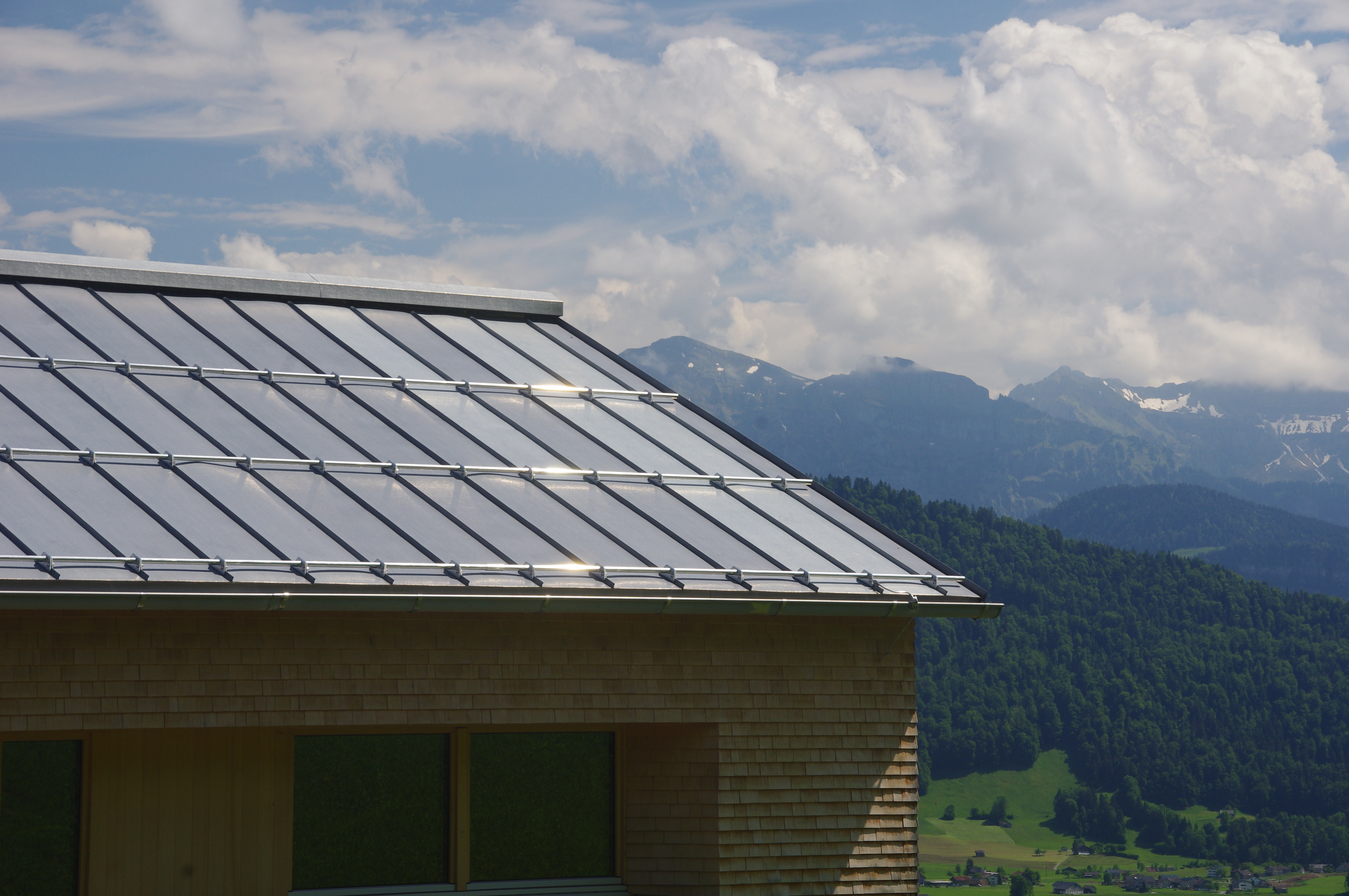 terne roof in the environment